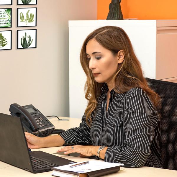 Virtual Office Rentals